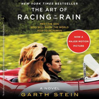 The Art of Racing in the Rain audiobooks