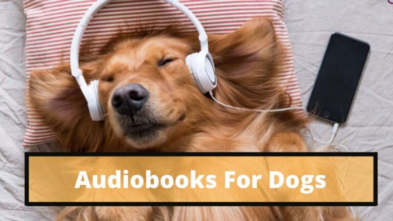 dogs audiobooks