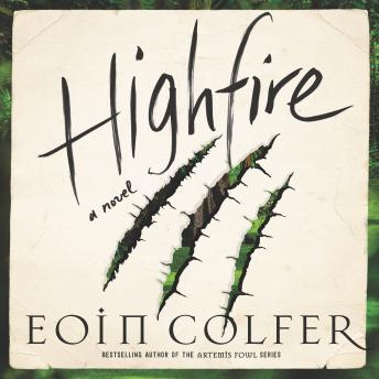 Highfire: A Novel Audiobooks