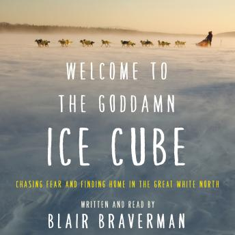 Welcome to the Goddamn Ice Cube audiobooks
